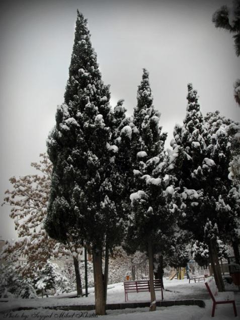 زمستان سال 1387